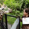 Zoologijos sode – galimybė išbandyti egzotiškiausią darbą
