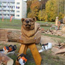 Medžio drožėjai pasiryžo sukurti 100 skulptūrų Lietuvai