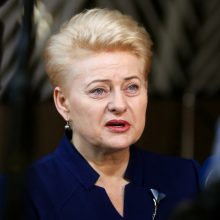 Prezidentė: nėra pažymų, kad Rusijos tarnybos su konservatoriais organizavo streiką