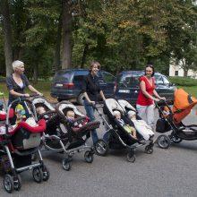 R. Karbauskis siūlo galimybę daliai tėvų gauti didesnes pensijas