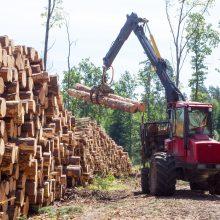 Miškų savininkai nenori mokėti medienos apyvartos mokesčio