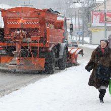 Vilniaus valdžia svarsto, ar reikėtų naujos technikos gatvių priežiūrai