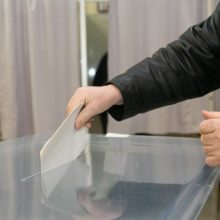 Seimas linkęs daryti referendumą su dviejų savaičių pertrauka