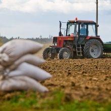 Pradedami mokėti tiesioginių išmokų ūkininkams avansai