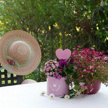 Šventinio savaitgalio pabaiga – maloniai šilta