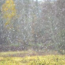 Lietuviai jau fotografuoja pirmąsias šį rudenį snaiges