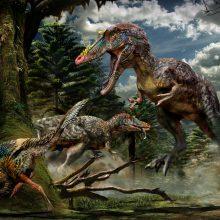 Mokslininkai atskleidė daugiau detalių apie tiranozaurus
