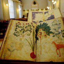 Senuosius Vatikano rankraščius jau galime pamatyti nemokamai ir iš namų
