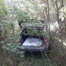 Vogtu automobiliu važiavusio esto krūmynai neišgelbėjo