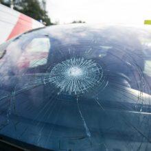 Ieškomi tragiškai pasibaigusio eismo įvykio liudininkai