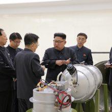 Jungtinės Valstijos: Šiaurės Korėja prašo karo