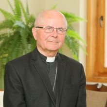 Vyskupas S. Tamkevičius: nepasiklyskite tarp detalių