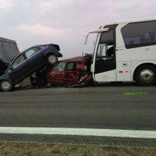 Varėnos rajone – autobuso, vilkiko ir dviejų automobilių avarija