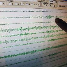 Estijoje supurtė silpnas žemės drebėjimas