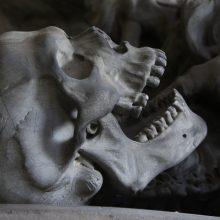 Rastą 400 tūkst. metų senumo kaukolę gaubia paslaptys