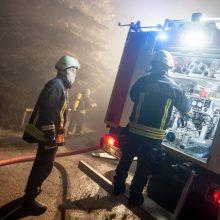 Ugniagesiai sukelti ant kojų: liepsnojančiame name gali būti žmogus