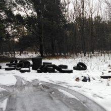 Klaipėdos rajono miškuose – kalnai padangų