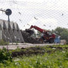 Dėl smarvės Klaipėdos mieste – užduotys seimūnams