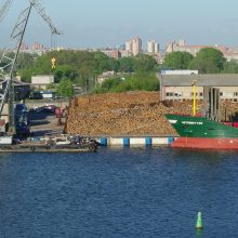 Dėl bankrutavusios uosto bendrovės – atgarsiai Seime