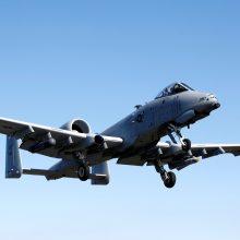 JAV lėktuvai dalyvauja pratybose Estijos saloje