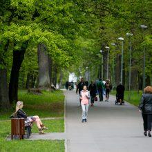 Viceministras: Aplinkos ministerija stabdytų nesuderintus darbus Ąžuolyne