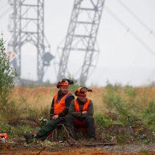 Vokietijos teismas netikėtai uždraudė energetikos milžinei kirsti sengirę