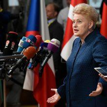 ES šalių lyderiai pritarė Lietuvos iniciatyvai dėl kibernetinių atakų