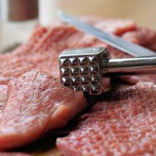 Šaldytuvų liga yra daug pavojingesnė nei salmoneliozė