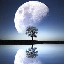 Astrologinė prognozė sausio 28-vasario 3 d.