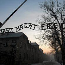 Aušvice išgyvenę žmonės pagerbia Holokausto aukas