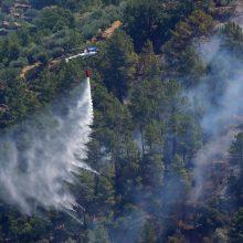 Portugalija kovoja su miškų gaisrais