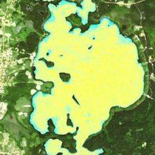 """Platelių ežero """"žydėjimas"""" užfiksuotas ir iš kosmoso"""