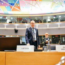 Viceministras: rengiant būsimąjį ES biudžetą turime užtikrinti jo kokybę
