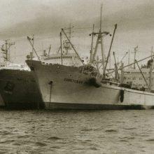 Netaikė: vis dėlto uostamiesčio mokslininkų padarytų atradimų Klaipėdos žvejybiniai laivai nenaudojo.