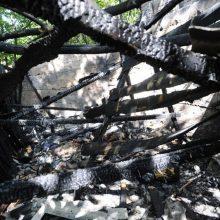 Tiria pavėsinės gaisrą, per kurį sudegė ir žoliaplovė, dviratis