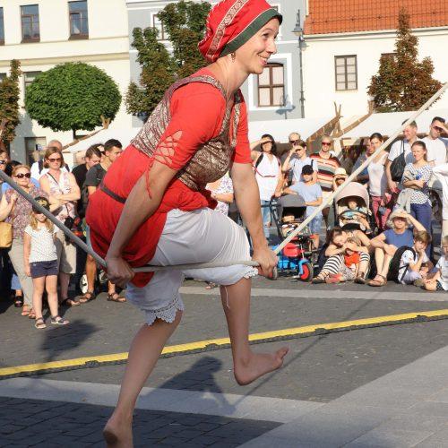 Sostinėje vyksta Šv. Baltramiejaus mugė  © D.Labučio/ELTOS nuotr.