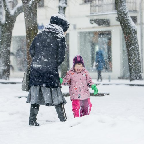 Gausus sniegas Kaune  © Vilmanto Raupelio nuotr.
