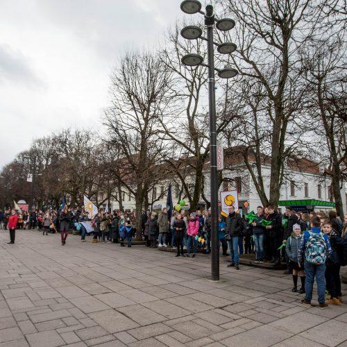 Žemės dienos minėjimas Kaune  © Vilmanto Raupelio nuotr.