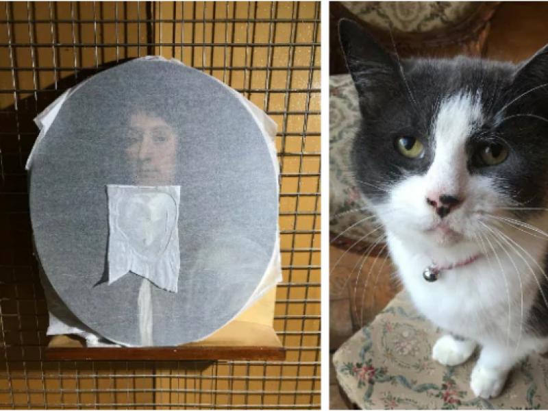 Katė sugadino XVII a. paveikslą