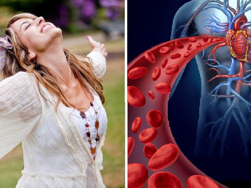 Gydytojas: kraujo sudėtis – gyvybės pagrindas