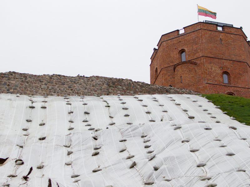 Kultūros viceministras su Vilniaus taryba aptars Gedimino kalno tvarkymo klausimus