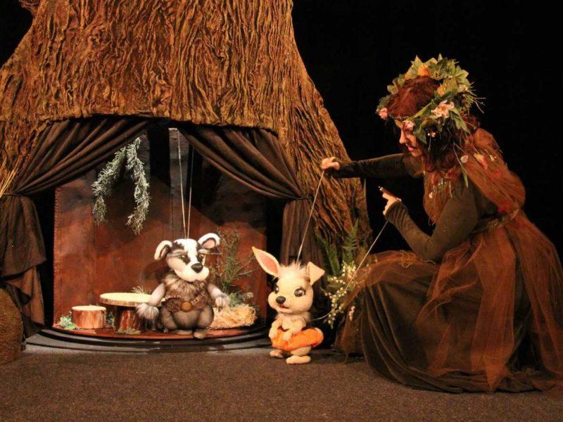 Pasaka apie gimtųjų namų magiją