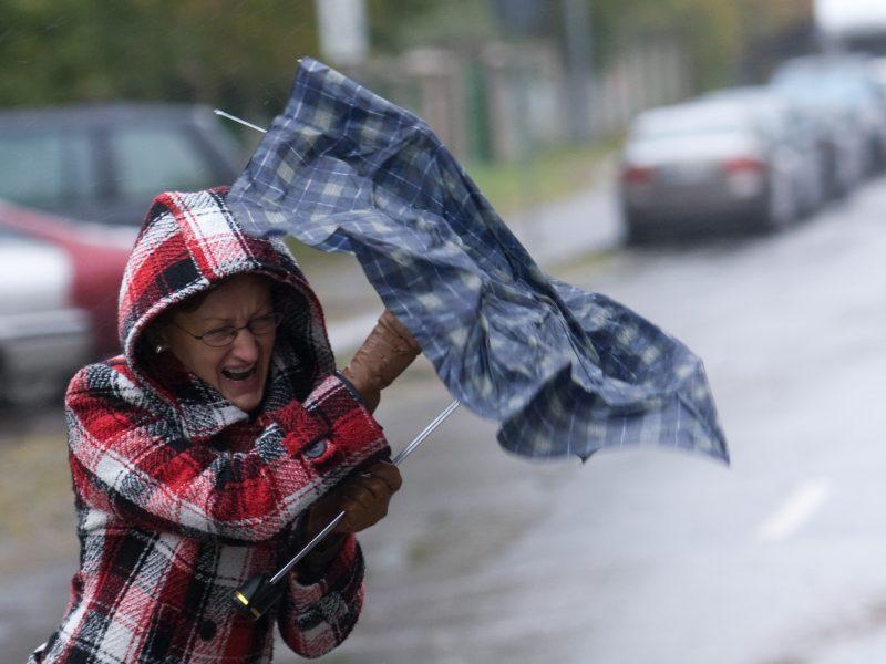 Sinoptikė: savaitės pradžia – lietinga ir vėjuota