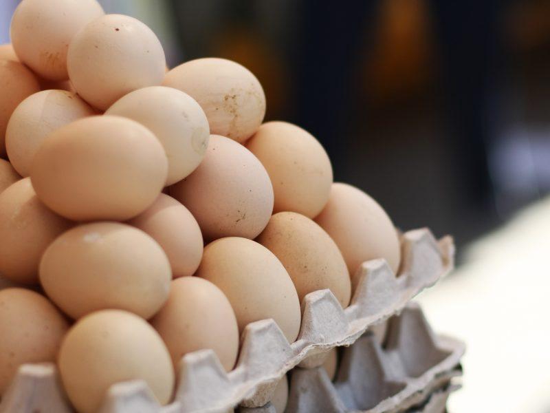 Užkrėstų kiaušinių skandalas Belgijoje: ar tai galėtų pasikartoti ir Lietuvoje?
