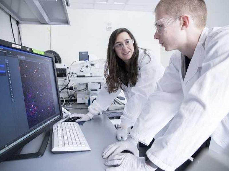 VU Gyvybės mokslų centro doktorantas – vienas iš naujo ląstelių tipo atradėjų
