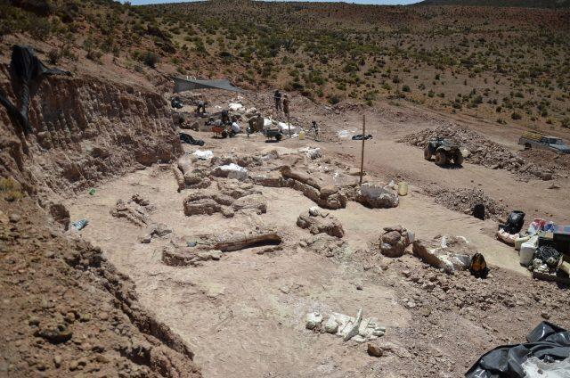 Mokslininkai atrado naują dinozaurų rūšį: milžinai svėrė net 76 tonas