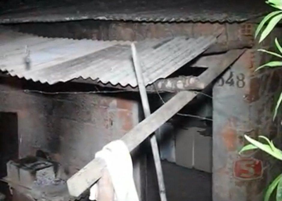 Brazilijoje karvė įgriuvo per namo stogą ir užmušė viduje buvusį vyrą
