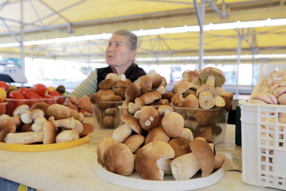 Pajūrio gyventojai grybauti skuba ir į turgų