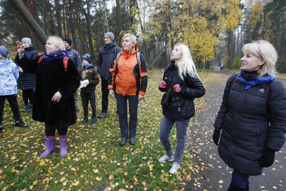Lapkričio 12-oji Klaipėdos diena