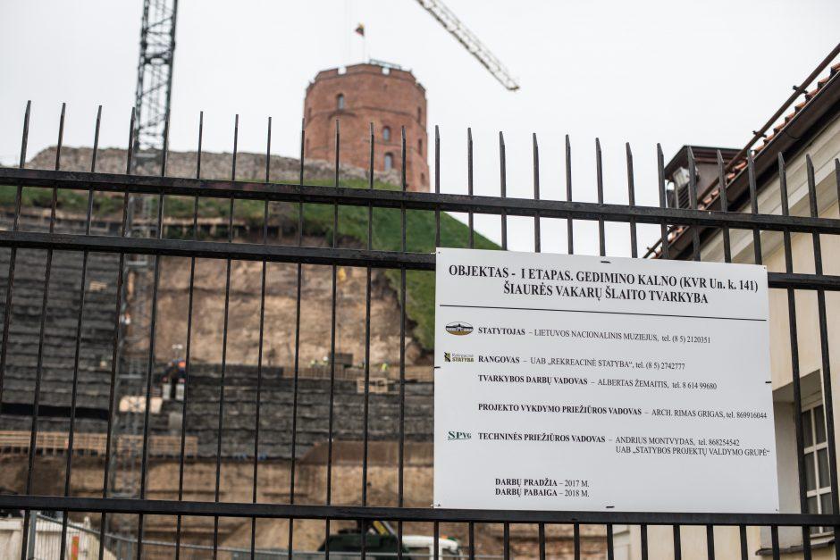 Gedimino kalno tvarkymo darbų kontrolės imasi pats R. Karbauskis